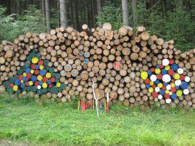 Foto: Wald und Flur